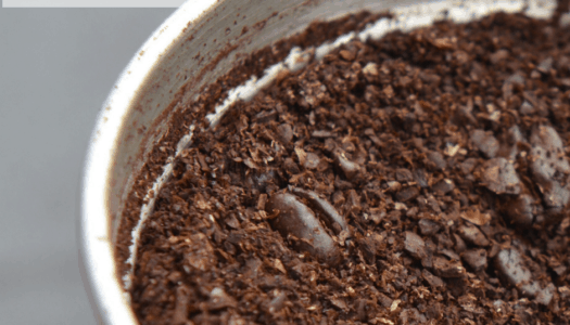 10 Genius Uses for Old Coffee Grounds